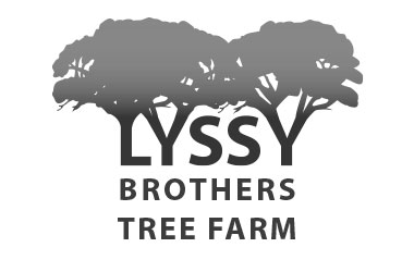 Lyssy Brothers Tree Farm
